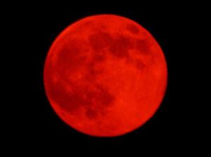 """""""new moon solar eclipse in scorpio"""""""